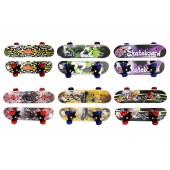 Kids Small Skate Board