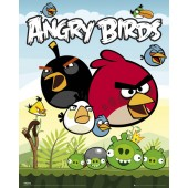 Angry Bird Group Picture Frame On Wooden Frame