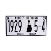 1929 5-4 AUDREY HEPBURN Wall Decoration Vintage Metal