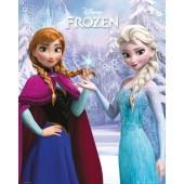 Frozen Duo Mini Poster On Wooden Board