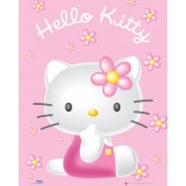 Hello Kitty Pink Picture Frame