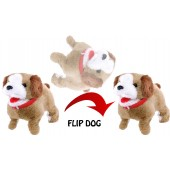 Somersaulting & Barking Little Puppy Dog
